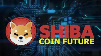 Photo of Shiba Coin Future 2021 – Will You Buy Shib Coin?