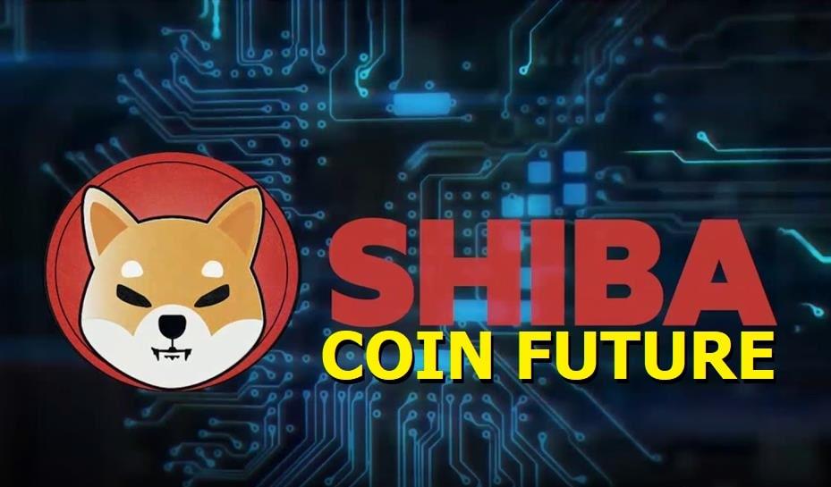 Shiba Coin Future 2021 - Will You Buy Shib Coin?